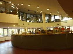 Университет Менеджмента